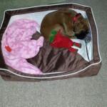 Mein Bettchen