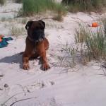 DK: Am Strand